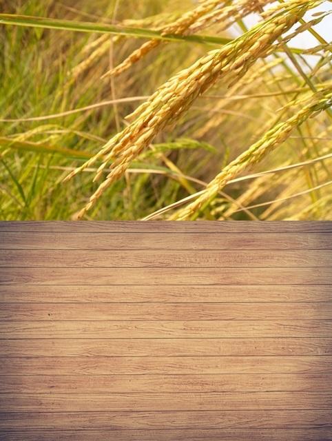 lemn din orez